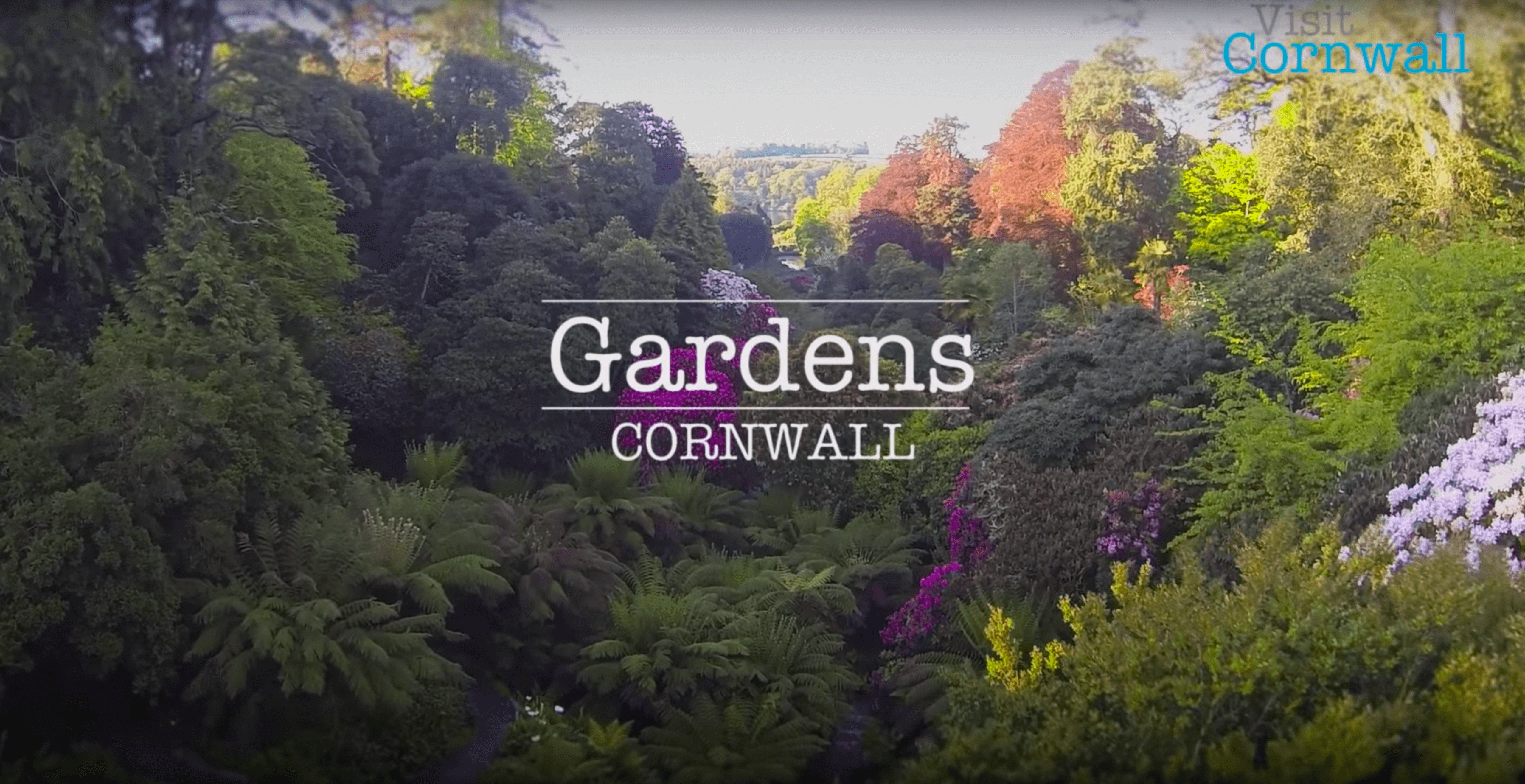 Our Visit Cornwall video gains impressive YouTube views